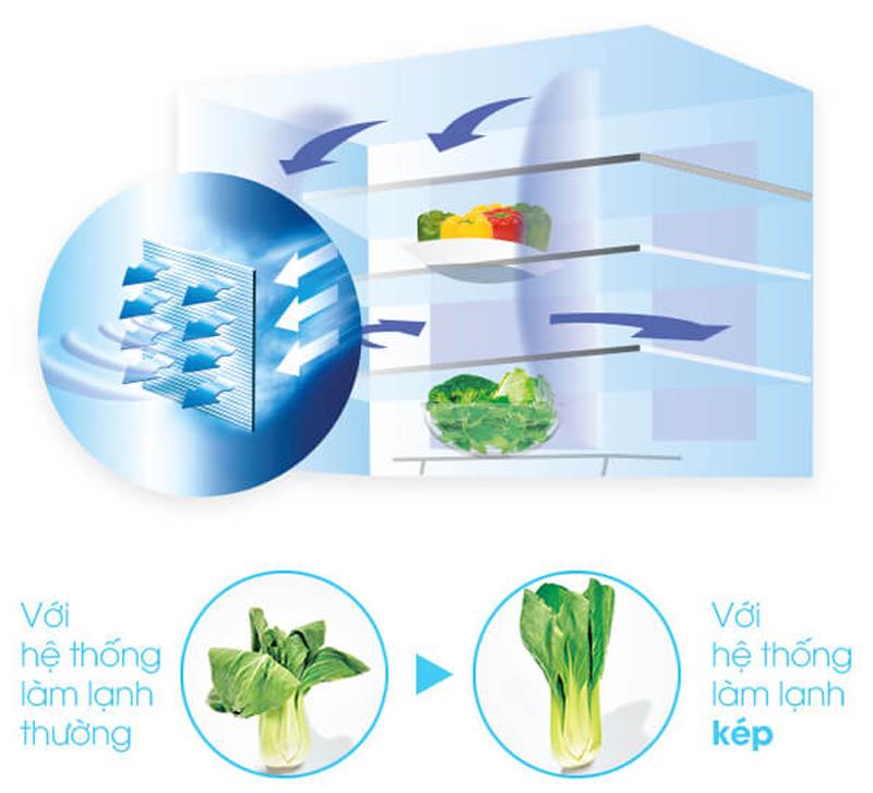 Có nên mua tủ lạnh Nhật Hitachi R-WX6700G